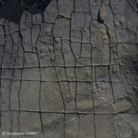 Traces d'argile bordé